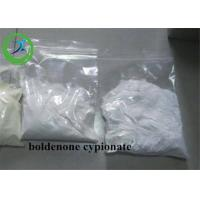 China Boldenone Cypionate / Boldenone cyclopentanepropionate Steroids Powder wholesale