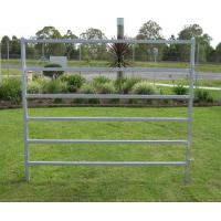 China 20 Portable Horse Stall Panels round Yard, Cattle Fences, Corral 14m diameter wholesale