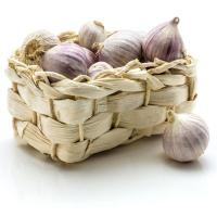 China Wholesale market price for chinese normal white fresh garlic wholesale