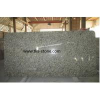 China Gialle Golden Autumn granite Kitchen Countertops,Natural stone countertops wholesale