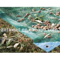 China We are professional in producing hdpe olive netting in China wholesale