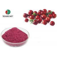 China Beverage Additives Cranberry Fruit Concentrate Juice Powder Purple Red wholesale