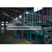 China High Automation Egg Carton Making Machine For Egg Tray / Fruit Tray / Wine Tray wholesale
