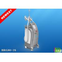 Weight loss Cryolipolysis Body Cryoshape Slimming fat cellulite removal