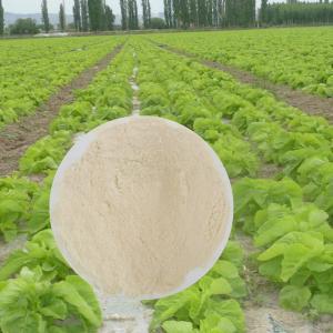 China Chelated Calcium Magnesium Organic Foliar Spray Fertilizer Longer Fruit Shelf Time wholesale