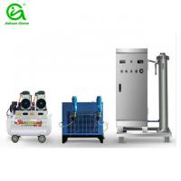 China 200g/h water treatment ozone generator for fish farming wholesale