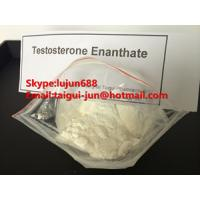 China Safe Anabolic Muscle Building Testosterone Enanthate Test En White Crystalline Powder CAS 315-37-7 wholesale