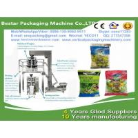 China Fresh Garden Salad packing machine,all kind of vegetables, like iceberg lettuce, romain, spring onion and leek machine wholesale