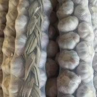 China New Crop Braid Garlic For Sale wholesale
