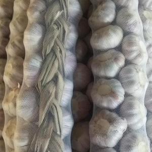 China Wholesale New Crop Sack Fresh Braid Garlic wholesale