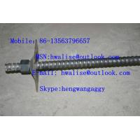 China Rebar  rock bolt/anchor rod/anchor bolt wholesale