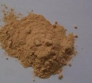 China Butterbur Extract(Petasites Hybridus & Petasites Japonicus) 15%Petasin wholesale
