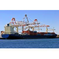 China Container shipping service to Aqaba wholesale