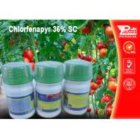 China Chlorfenapyr 36% SC Pest control insecticides 122453-73-0 wholesale