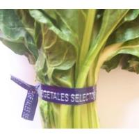China paper printed vegetables' twist ties/bag closures/clips wholesale