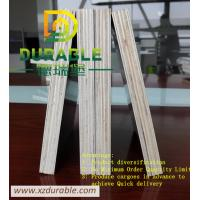 China China best quality  plywood factory / Black  Film faced shuttering plywood E2 Glue Poplar Core 18MM on sale