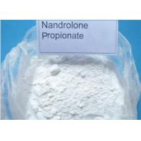China 98% Purity Anabolic Steroid Nandrolone , Nandrolone Propionate 7207-92-3 wholesale