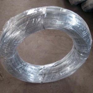 China elektro tela hekuri i galvanizuar wholesale