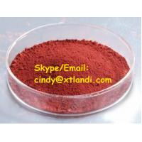 China Iron oxide red 99.95% IRON OXIDE RED High purity Chinese supplier cindy@xtlandi.com wholesale