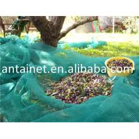 China green olive net/ olive harvest net/HDPE shade net for agriculture wholesale