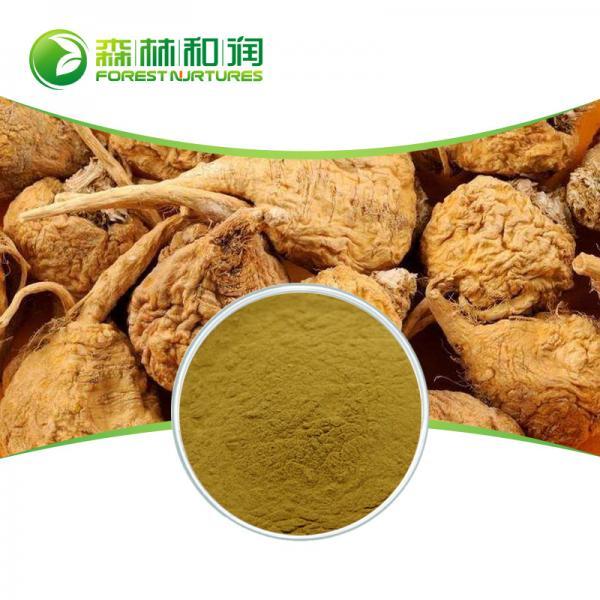 Quality Peru natural maca P.E. benefits for men maca root powder for sale