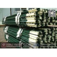 China Green Bitumen coated T Studded Post with Anchor Plate | Studded T post China Factory wholesale