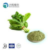 Quality Herbal Plant Extract Powder Dehydrated Organic Spinach Powder For Weight Loss for sale