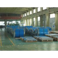 China Stainless Steel Strip Roll wholesale