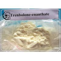 China Tren E Trenbolone Steroid Dosages and Cycle Length Trenbolone Enanthate wholesale