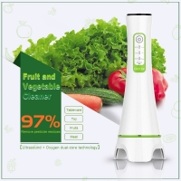 China Family Pack Ultrasonic Automatic Ozone Vegetable And Fruit Purifier Remove Metal Conta wholesale