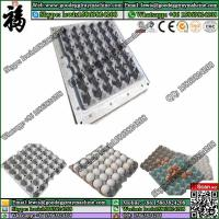 China plastic egg crate mould/ egg rack mold / die wholesale