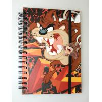 China PLASTIC LENTICULAR flip printed spiral school lenticular 3d notebook cover printing on sale