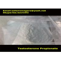 China Cas 57-85-2 Muscle Growth Steroids Testosterone Propionate Powder / Test Propionate wholesale