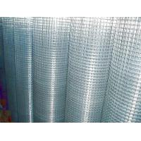 China with 20 years welded wire mesh directly manufacturer and factory  wholesale