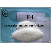 China T4 Fat Loss Hormones Chemical Raw Material CAS 55-03-8 Levothyroxine Sodium / T4 wholesale