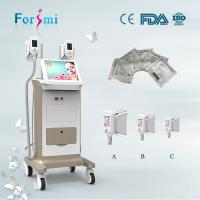 China Factory Price champagane painting 15 inch 2 handles Cryolipolysis Slimming Machine wholesale