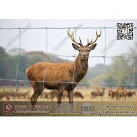 China Woven Filed Fence   Cattle Fencing   Grassland Fence   China Factory wholesale
