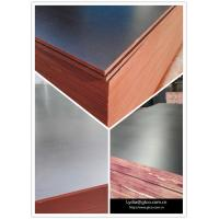 China Construction Shuttering Plywood/18mm Film Faced Plywood /Waterproof Filmed Plywood Board wholesale