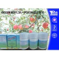 Buy cheap KRESOXIM-METHYL 25% + EPOXICONAZOLE 5% SC Pesticide Mixture 143390-89-0, 106325-08-0 from wholesalers