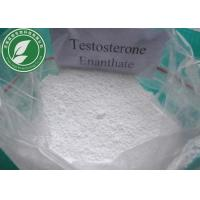 China Raw Steroid Powder Testosterone Enanthate CAS 315-37-7 With Safe Delivery wholesale