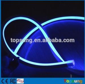 China 24v blue color decoration square led neon flex lights  pvc tube for garden wholesale