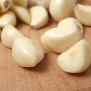 China Normal white garlic 5.5cm wholesale