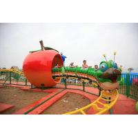 China 2012 Hot Sale Amusement Park Mini Roller Coaster wholesale