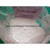China CAS 315-37-7 Testosterone Enanthate Injectable Steroids , Test Enan Androtardyl Testosterone Injections Steroids wholesale