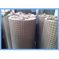 Buy cheap Electric Fusion Galvanised Welded Mesh Rolls Stainless Steel Wire 19 X19x1.6mm from wholesalers