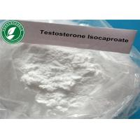 China Testosterone Isocaproate Test I Raw Steroid Powders CAS15262-86-9 for Muscle Gain wholesale