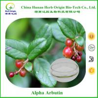 Bearberry Leaf Extract 1%-99.5% Alpha Arbutin,beta arbutin etc