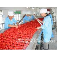 China Fruit paste/concentrate processing plant for tomato, strawberry, blueberry, raspberry, mulberry, chili, etc. on sale