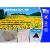 China Systemic Fungicide For Apple Trees / Berry Fruit , Iprodione 50% WP wholesale