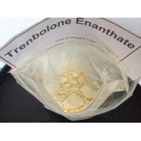 China Injectable Trenbolone Steroids Trenbolone Enanthate / Tren E CAS 10161-33-8 wholesale